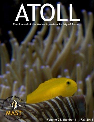 atoll 25-1 - Marine Aquarium Society of Toronto