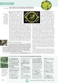 Natur & Land - Naturschutzbund - Page 7