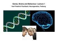 Genes, Brains and Behaviour: Lecture 1 - Fischbach Drosophila lab