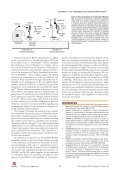 New roles of osteoblasts involved in osteoclast differentiation - Page 5