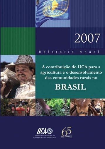 Relatório anual 2007 - IICA