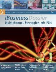Multichannel-Strategien mit PIM - iBusiness