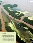 BP oil spill – BioEcoGeo – august 2010 - destination food - Page 4