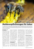 WS-Journal 03/2013 - Weissensee - Page 6