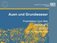 Auen und Grundwasser - beim Flussdialog Licca liber