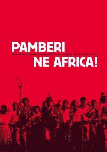 Pamberi ne Afrika Broschüre-2007.pdf - Bildungswerk Berlin der ...