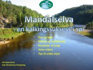 Årsmøte Norske Lakseelver - Mandalselva- en kalkingssuksess i sør
