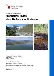 Fachbericht zur Ausstellung Faszination Boden - Vorarlberg