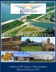 Knoxville Area 2013 - Iowa Workforce Development