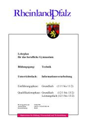 Lehrplan für das berufliche Gymnasium Bildungsgang: Technik ...