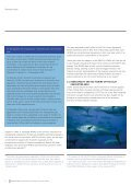 How ICCAT is failing to curb IUU - International MCS Network - Page 6