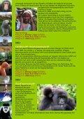 Gorillas, SCHIMPANSEN Und Wildlife - Uganda - Seite 2