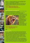 Gorillas, SCHIMPANSEN Und Wildlife - Uganda - Seite 3
