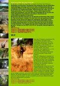 Gorillas, SCHIMPANSEN Und Wildlife - Uganda - Seite 5