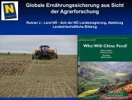 Globale Ernährungssicherung aus Sicht der ... - Land-Impulse