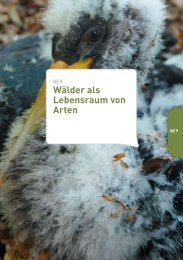 be9-der-leitfaden-natura-2000-naturawal.pdf
