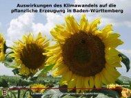 Flaig - Klimawandel und Auswirkungen auf die pflanzliche Erzeugung