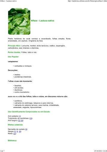 Alface - Lactuca sativa - Medicina Biomolecular