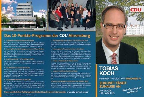 Kandidatenflyer Kandidatur im Wahlkreis 10 - Tobias Koch