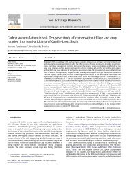 Carbon accumulation in soil. Ten-year study of conservation tillage ...