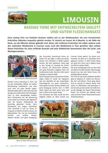 Limousin : rassige Tiere mit entwickeltem Skelett und gutem ... - AWE