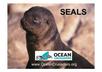 10th Lesson Seals.pdf - oceancrusaders.org