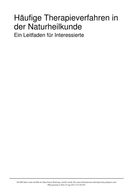 Stich Nerven Mensch II Rückenmark Schlagader Lendenwirbel Nerv 1890 Original
