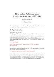 Eine kleine Anleitung zum Programmieren mit MATLAB