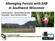 Implementation of a Model Emerald Ash Borer Management ...