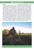 SIBIRISCHER REHBOCK - Seite 4