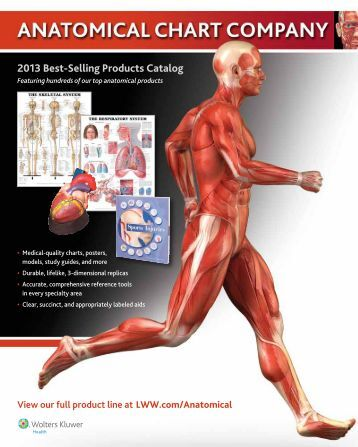 2013 Best-Selling products Catalog