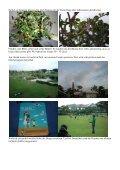 News from Singapore (& India): Alles Kacke - Frank Becker - Seite 3