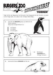 'FORMEN' - Burgers' Zoo