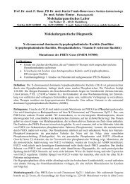 Phosphat-Diabetes, PHEX-Gen