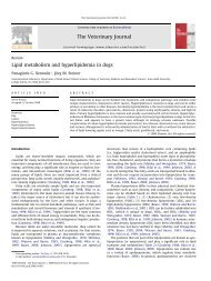 Lipid metabolism and hyperlipidemia in dogs
