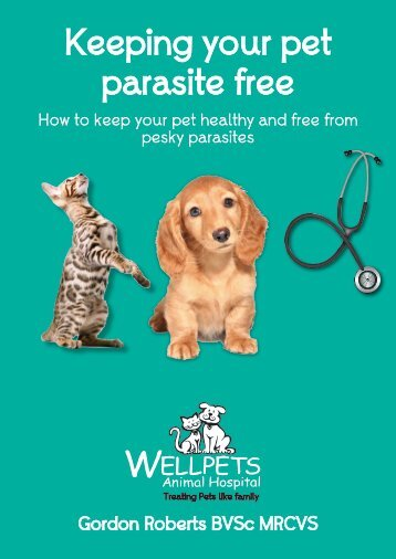 Keeping your pet parasite free - Wellpets Animal Hospital
