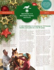 2013 Newsletter - the Westwind 4-H Riding for the Handicapped ...