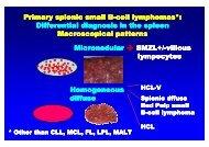 Primary splenic small B-cell lymphomas*: cell lymphomas ...