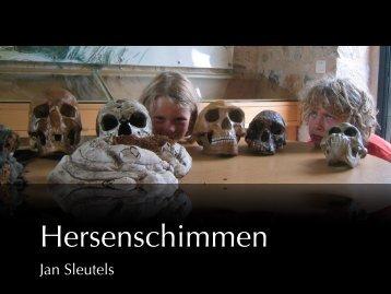 Jan Sleutels - Dassein.com