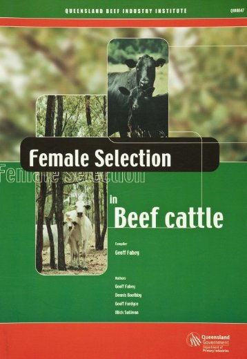 Female selection in beef cattle - FutureBeef