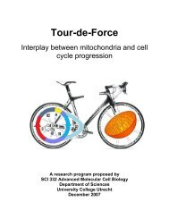 Tour-de-Force