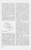 Bulletin - Summer 1979 - North American Rock Garden Society - Page 4