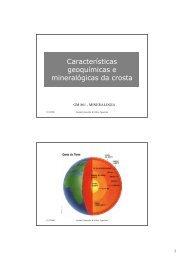 caracteristicas da crosta