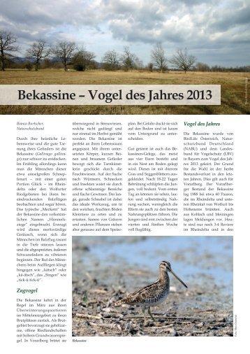 Bekassine – Vogel des Jahres 2013 - Naturschutzbund