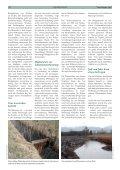 Bekassine – Vogel des Jahres 2013 - Naturschutzbund - Seite 2