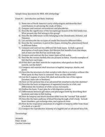 Sample Essay Exam