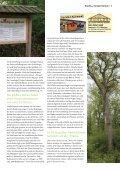 Entlang des Öschenbachtals wandern Seite 23 - Gomaringer Verlag - Page 5