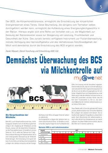 Demnächst Überwachung des BCS via Milchkontrolle auf