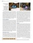 3TUTFOHLEN A AM - Peter Richterich - Seite 5