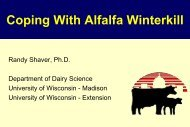 Maximizing Reproductive Efficiency in Lactating Dairy Cows